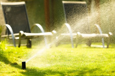 How to keep a lawn fresh and green