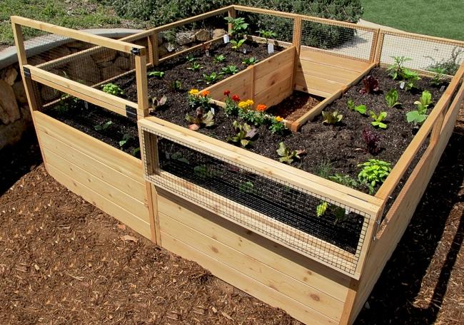 Gardening Kit - Raised Garden Bed
