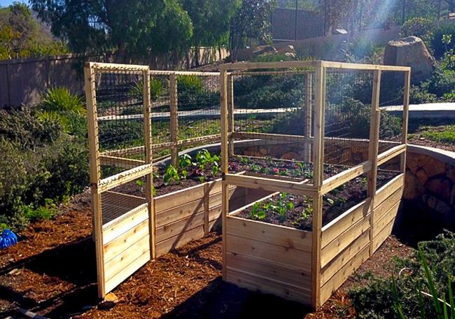 Gardening Kit - Raised Garden Bed with Deer Fence