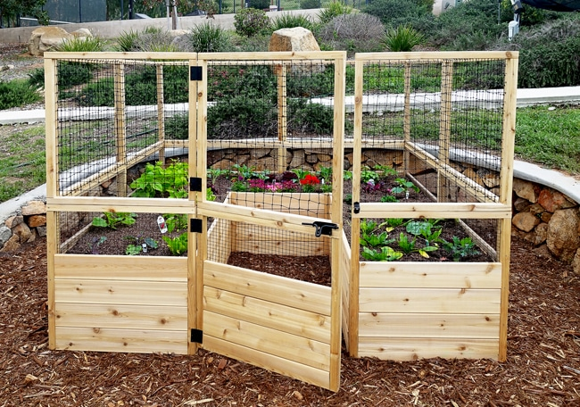 Gardening Kit   Raised Garden Bed With Deer Fence