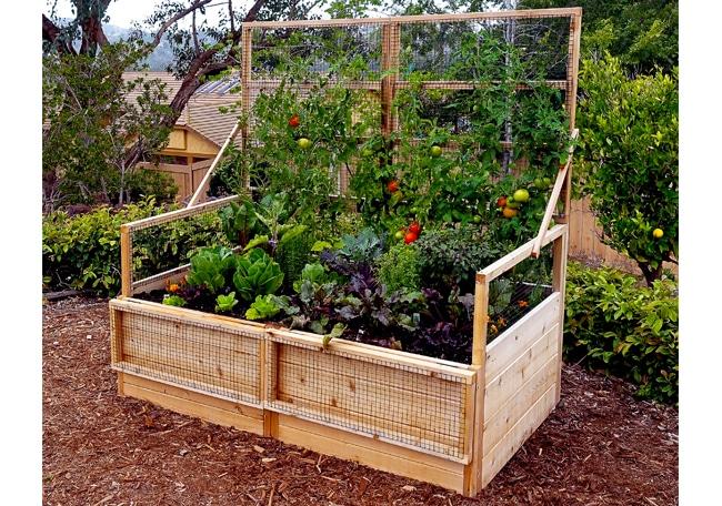 Garden Bed - Raised with Trellis Lid