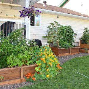 Gardening Beds