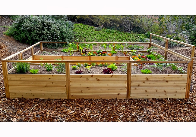 Gardening Bed | Raised Garden Bed