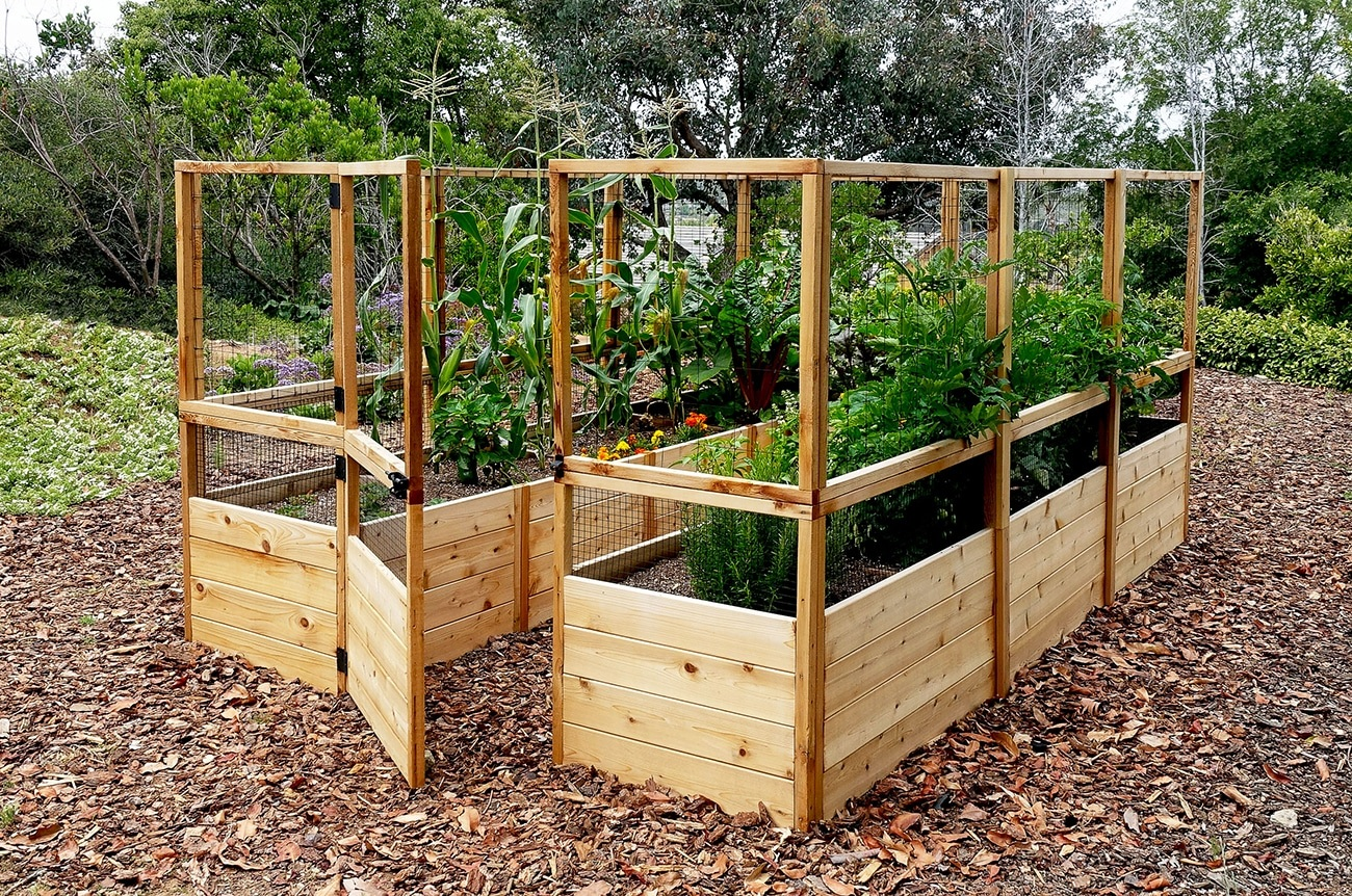 Raised Bed Fenced Garden