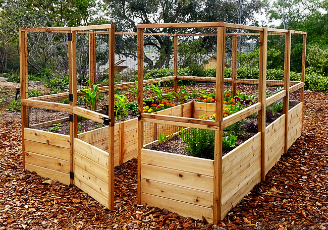 Garden in a Box Kit with Deer Fence Kit | 8 x 16 - OLT